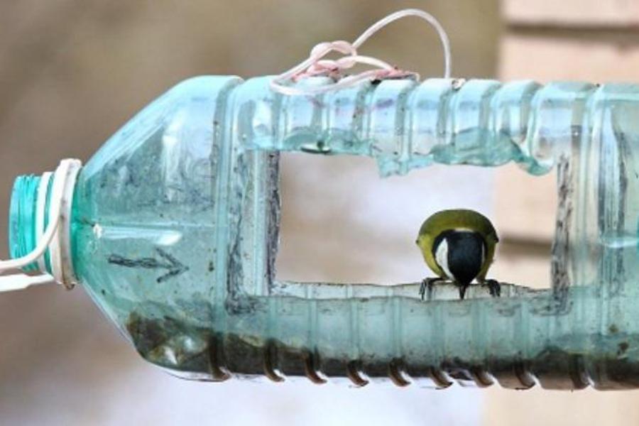 Кормушка из пластиковой 5 литровой бутылки своими руками