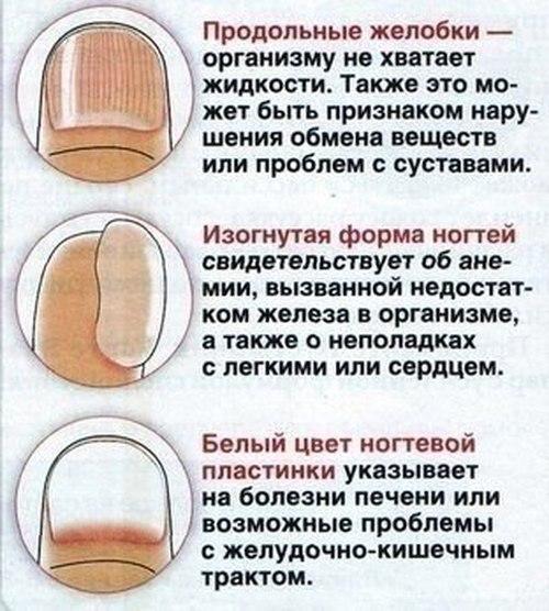 Что может сказать о человеке форма ногтей